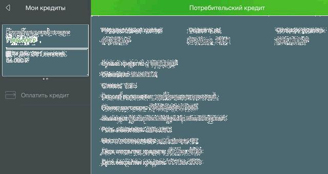 Страница детальной информации по кредиту в приложении Сбербанк ОнЛайн для iPad